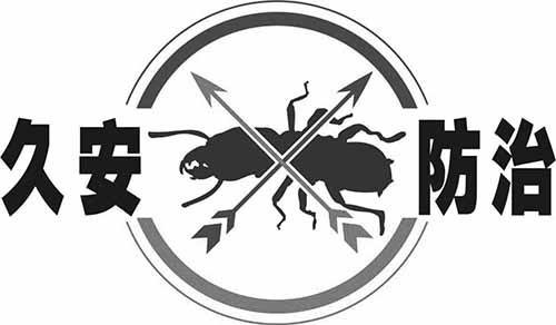 房屋装修要不要做白蚁预防呢?