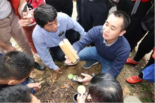 梁旭明老师正在指导学员土白蚁外环境的诱杀图